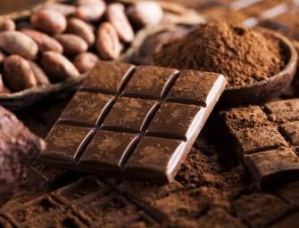 Du cacao au chocolat : les secrets du chocolatier