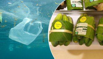 Les supermarchés thaïlandais et vietnamiens utilisent des feuilles de bananier au lieu d'emballages en plastique