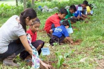 Les étudiants des Philippines plantent des arbres pour obtenir leur diplôme
