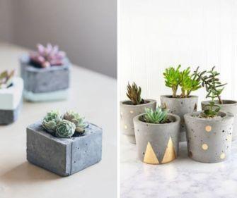 Des pots en béton pour vos succulentes