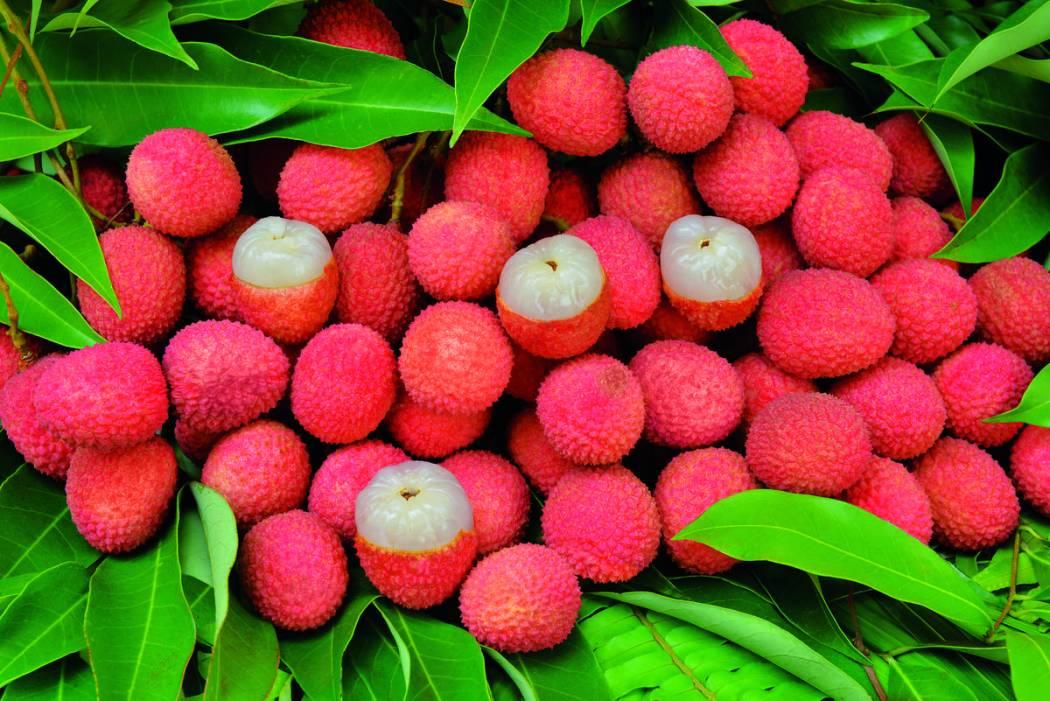 fruits33_letchis_-_credit_irt_-_serge_gelabert_dts_12_2016