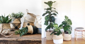 Décor naturel et végétal : Les caches pot en osier
