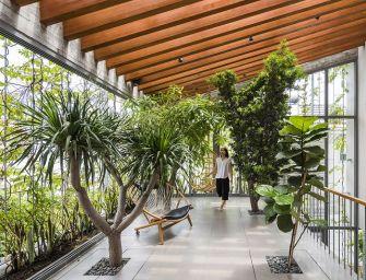 Une maison et son jardin intérieur à Ho Chi Minh Ville