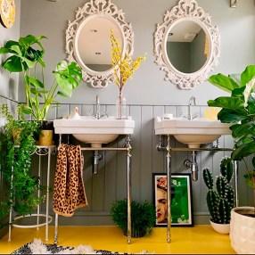 Des plantes dans votre salle de bain (3)