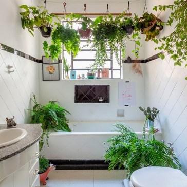 Des plantes dans votre salle de bain (7)