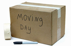 moving day mistakes