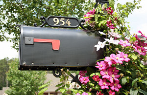 Step-By-Step Guide to Changing Your Address