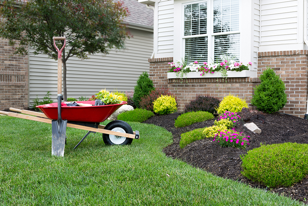 landscaping the front yard