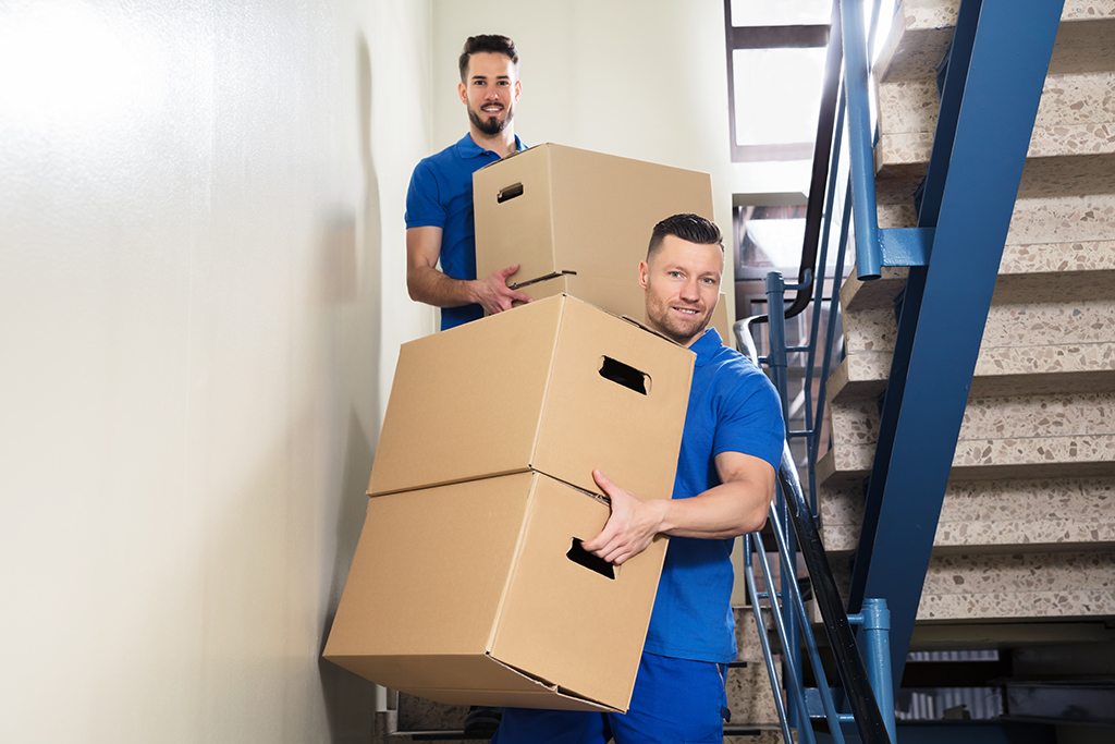 Should You Hire Day Labor to Help You Move?   Moving.com