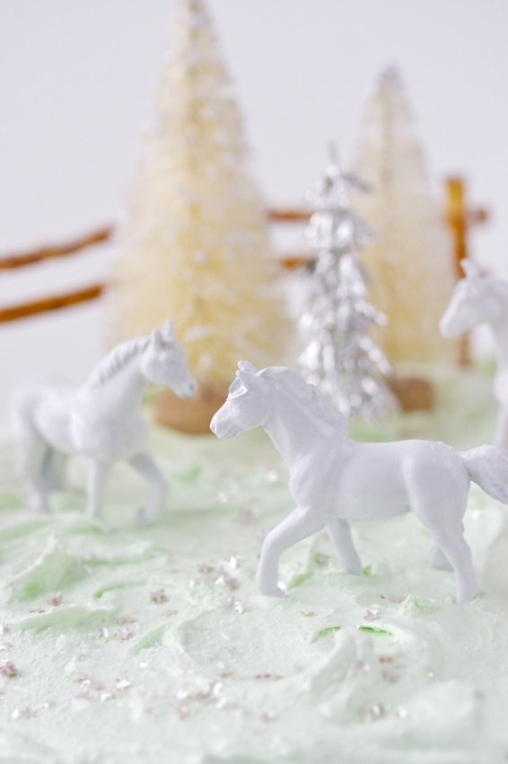 giddy-up cake | movita beaucoup