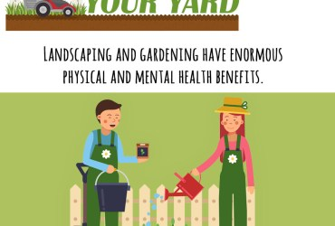 Lawn Care – Maintain and Mow a Lawn