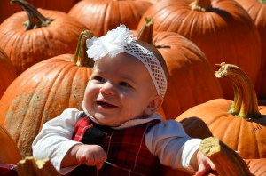 Payton Pumpkins