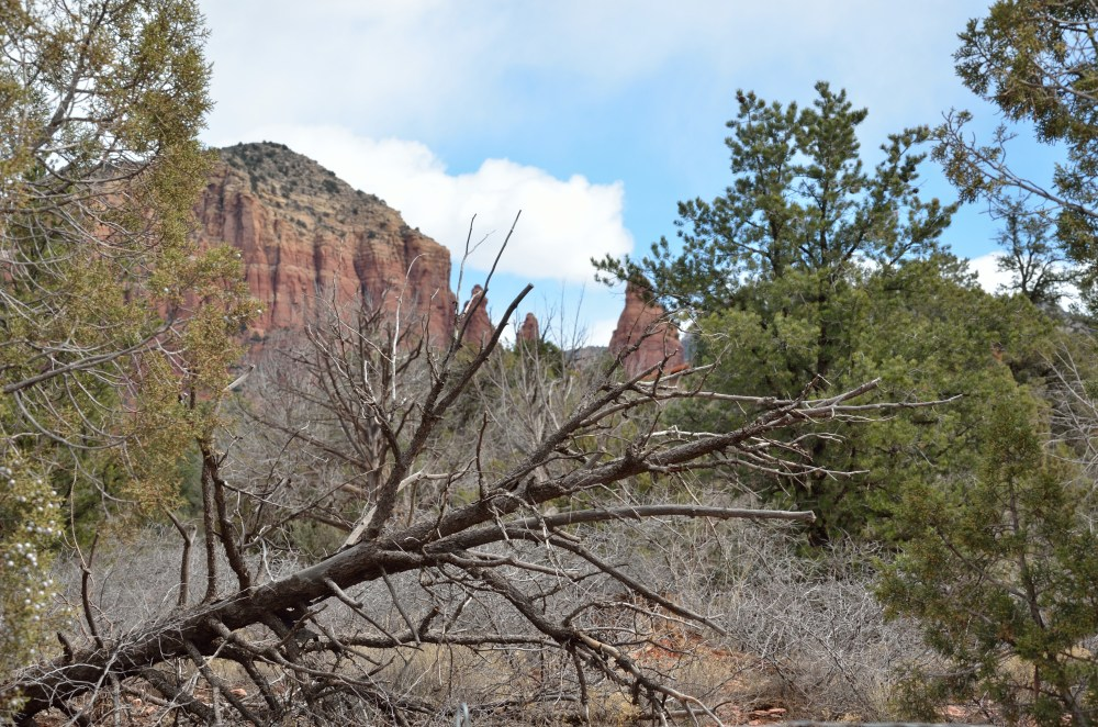 Courthouse Butte 08