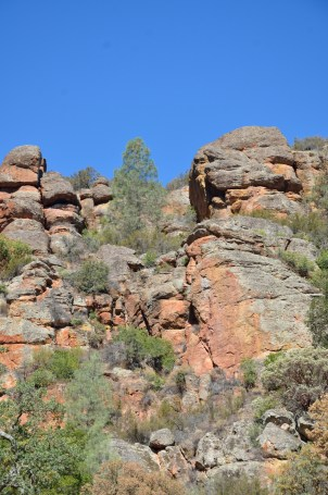 Pinnacles 41