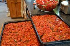 Roasted Tomatoes 21