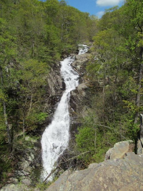 White Oak Canyon is one of the most popular hikes in the park, with several waterfalls and cascades to enjoy along the way. The parking area and trail head is near mile post 42. The upper falls (shown above) can be hiked as an out and back hike from Limberlost trail head, or can be linked as part of an 8.2 mile loop, rated strenuous. From the Park's Facebook page.