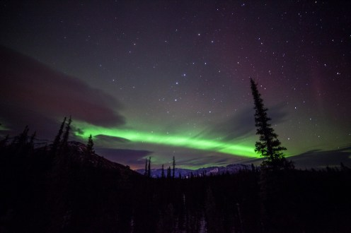 A faint showing of the northern lights graced the night sky during the weekend of 1/25/14. Posted on Tumblr on US Department of the Interior 1/27/14. Photo by Daniel A. Leifheit