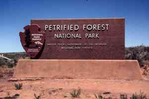 Petrified Forest NP 00