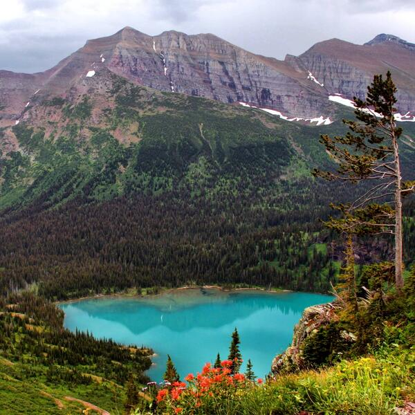 Grinnell Lake, Glacier National Park. Tweeted by the US Department of the Interior, 4/30/14.