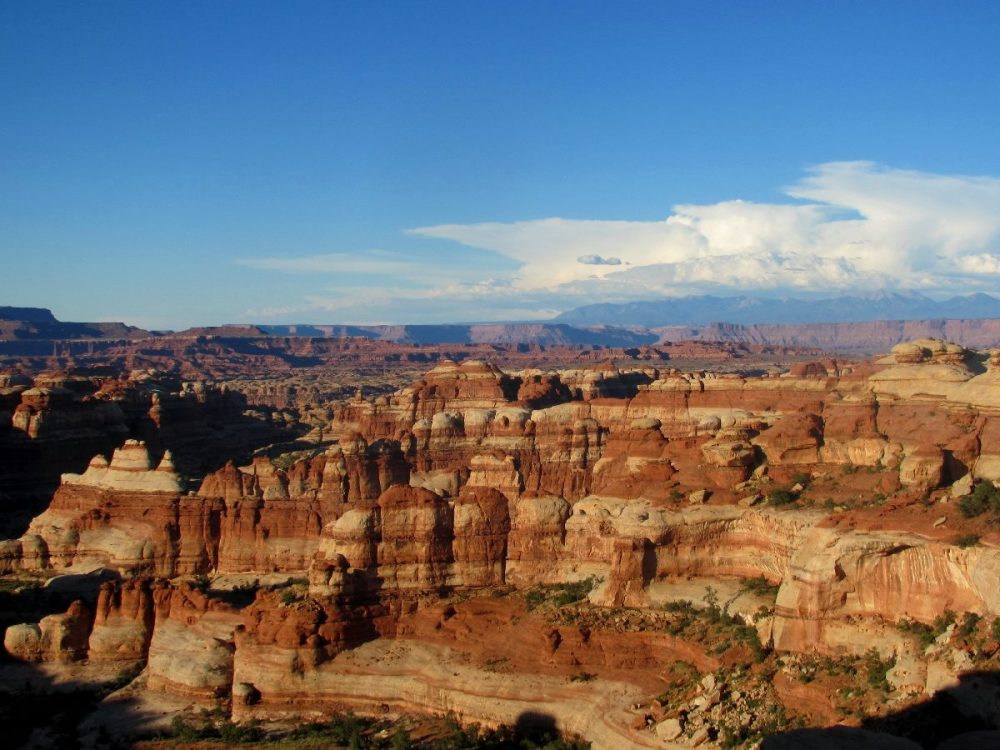 Canyonlands National Park in the setting summer sun. From the Park's Facebook page.