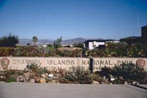 Channel Islands NP 00