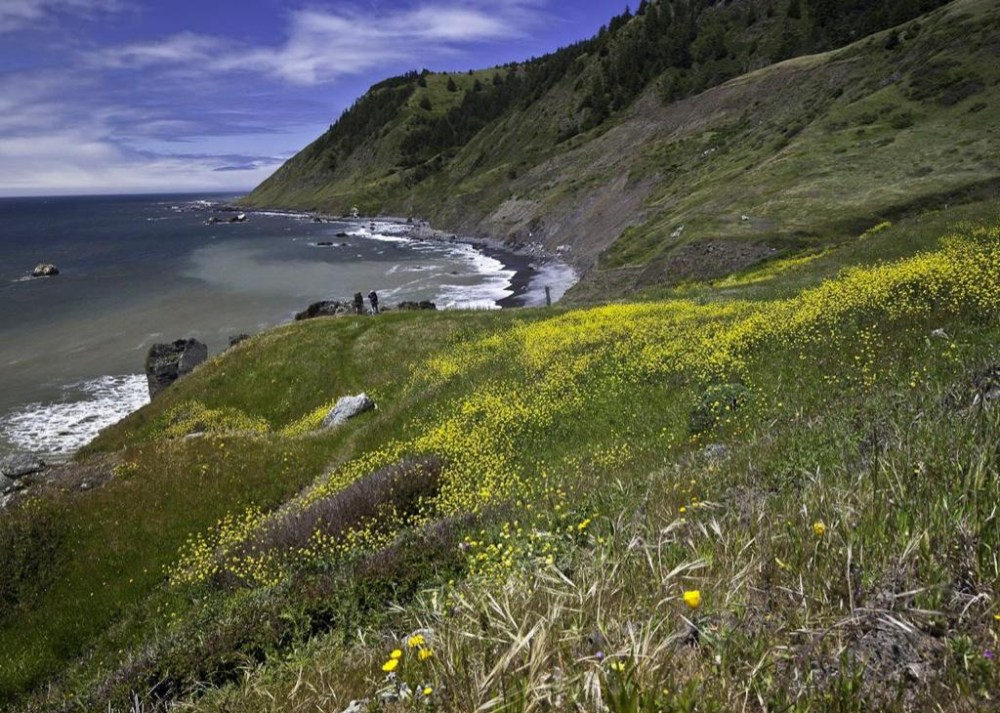 "The area is so remote, it's referred to as ""The Lost Coast."" Over 40,000 acres were designated wilderness in 2006 ... where the land meets the sea. It's in northern California. Tweeted by the US Department of the Interior, 7/16/14."