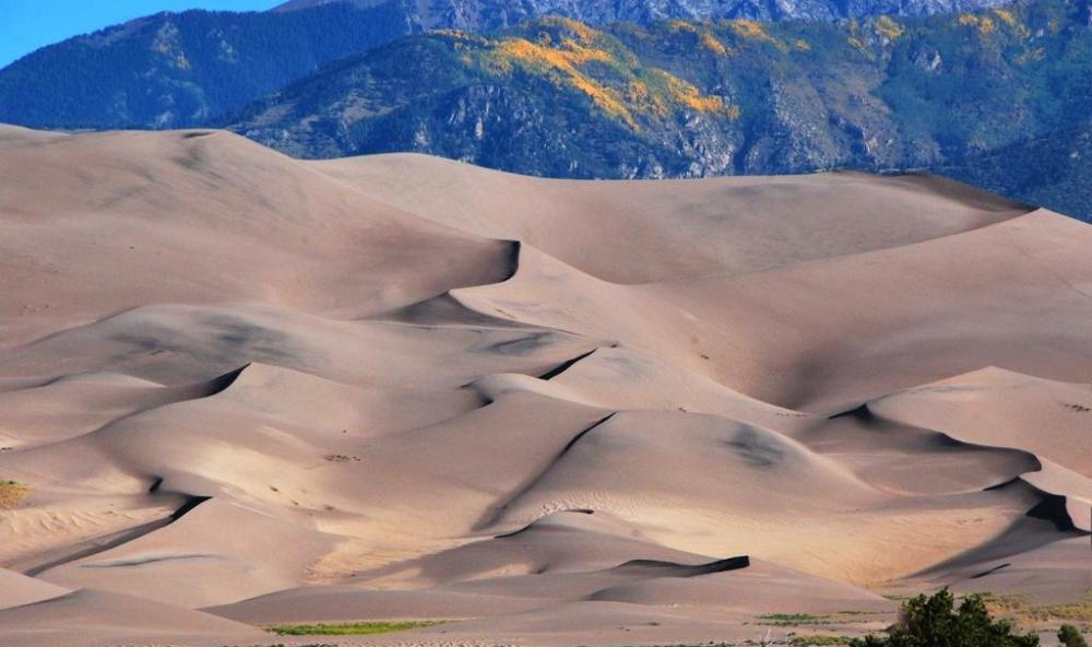 There's gold in them thar hills! Well, at least there is when the aspens turn gold on the hills above Great Sand Dunes National Park. Tweeted by the US Department of the Interior, 9/19/14.