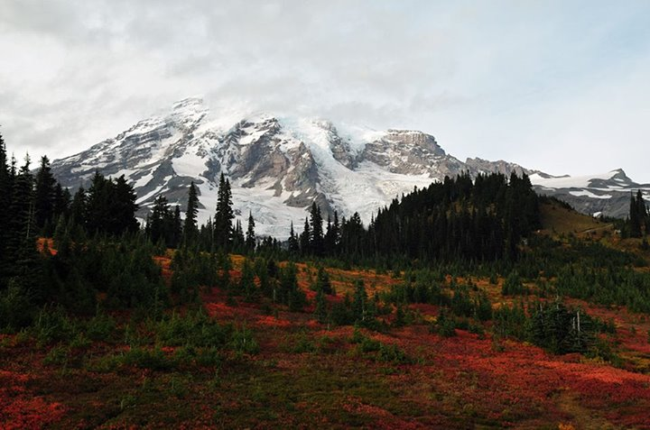 Mount Rainier National Park has 260 miles of maintained trails. How else could you see all of this beauty? Posted on Tumblr by the US Department of the Interior, 10/20/14.
