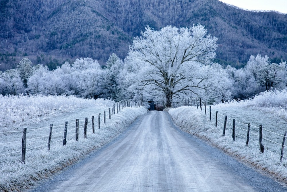 Sparks Lane in Cades Cove, Great Smoky Mountains National Park. Photo by Christopher Ewing. Posted on Tumblr by the US Department of the Interior, 12/21/14.