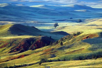 Swaying prairie grasses, forested hillsides and an array of wildlife — such as bison, elk, and prairie dogs — welcome visitors to one of our country's oldest national parks and one of its few remaining intact prairies. Wind Cave National Park in South Dakota protects one of the world's longest caves. Photo of the park's Red Valley at dawn by Glen Fredlund. Posted on Tumblr by the US Department of the Interior, 1/30/15.