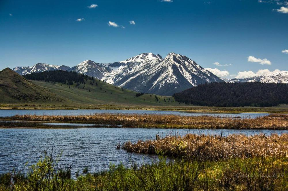 Red Rock Lakes National Wildlife Refuge in Montana. Tweeted by the US Department of the Interior, 3/11/15.