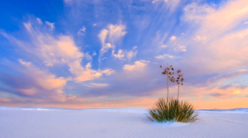 Rising from the heart of the Tularosa Basin is one of the world's great natural wonders — the glistening white gypsum dunefields of White Sands National Monument in New Mexico. Seemingly stark and barren, the 275 square miles of brilliant white gypsum sand are home to an amazing diversity of life, weaving a spell over all who visit it. Sunset photo by Donna Schneider. Posted on Tumblr by the US Department of the Interior, 2/25/15.