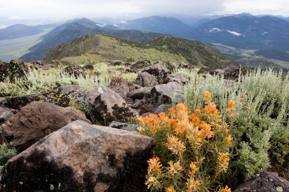 Slinkard Wilderness Area 02