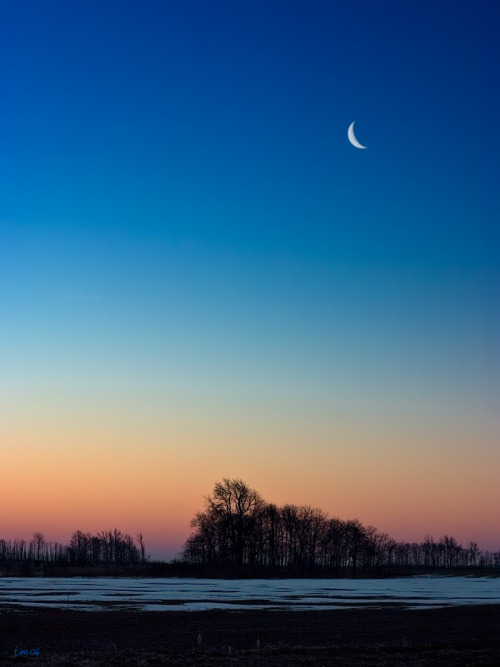 Wish you were still sleeping? A crescent moon rises over snowy marshes and the last rays of an orange-pink sunset at Bombay Hook National Wildlife Refuge. Located along the coast of Delaware, Bombay Hook protects one of the largest remaining expanses of tidal salt marsh in the mid-Atlantic region. Photo courtesy of Tim Williams. Posted on Tumblr by the US Department of the Interior, 2/19/16.