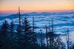 Great Smoky Mountains NP 38