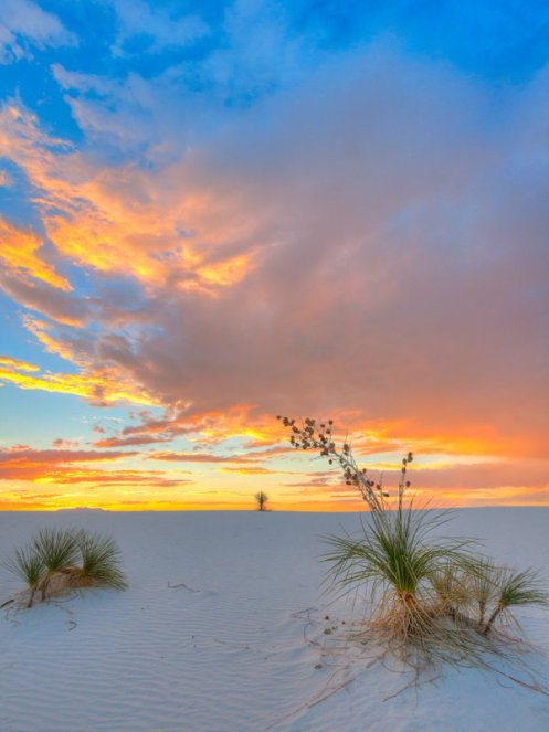 Like no place on earth - New Mexico's White Sands National Park. Photo by Thomas Piekunka. Tweeted by the US Department of the Interior, 4/11/16.