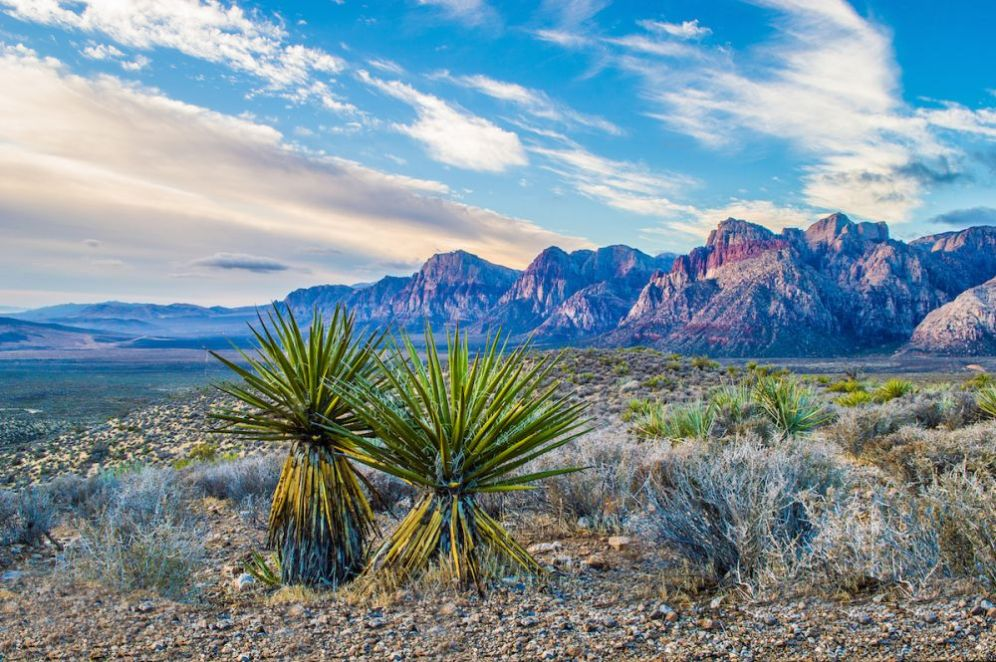 Red Rock Canyon National Conservation Area in Nevada – only 17 miles from the Las Vegas Strip – entices visitors with a 13-mile scenic drive, miles of hiking trails, rock climbing, mountain biking and more. With so many recreational opportunities, there's something for everyone. After a few straight days of rain and dark clouds, the skies cleared to create this serene sunrise over the area's unique desert landscape. Photo courtesy of Josh Packer. Posted on Tumblr by the US Department of the Interior, 6/10/16.