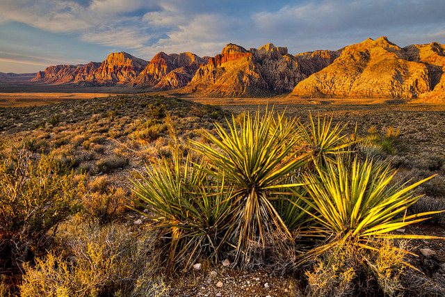 Nevada's Red Rock Canyon National Conservation Area. Photo by Bob Wicks. Tweeted by the US Department of the Interior, 10/21/16.