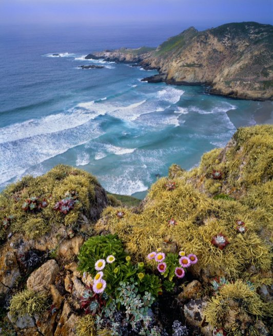 California's Channel Islands National Park. Photo by George H.H. Huey. Tweeted by the US Department of the Interior, 1/10/17.