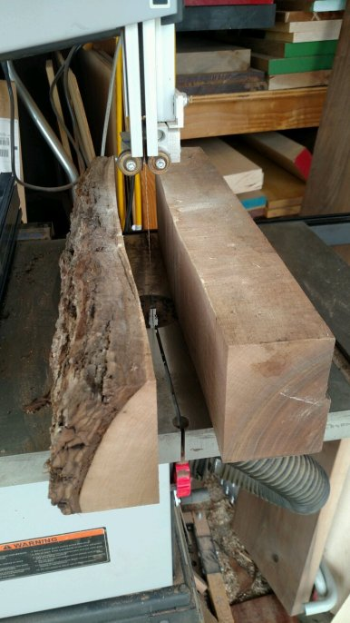 rough-walnut-02