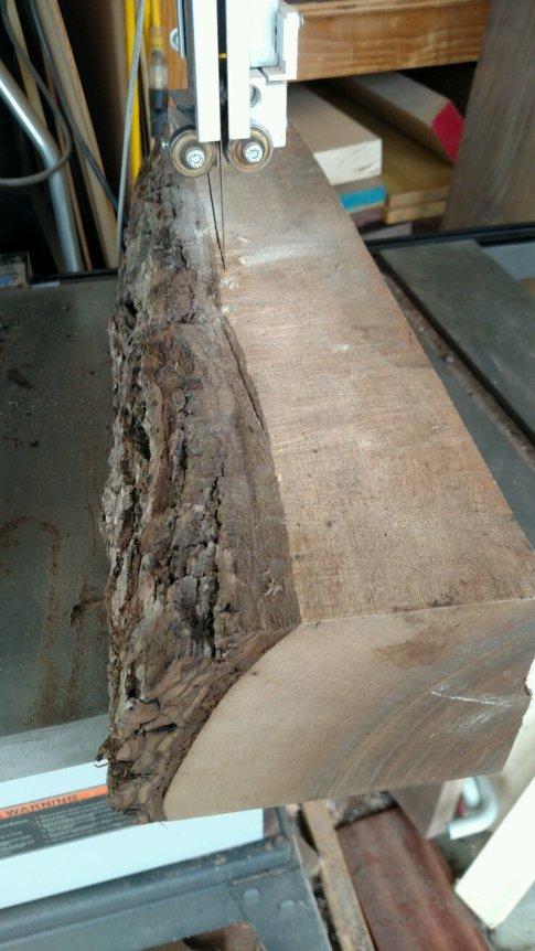 rough-walnut-22