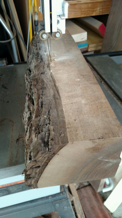 rough-walnut-22