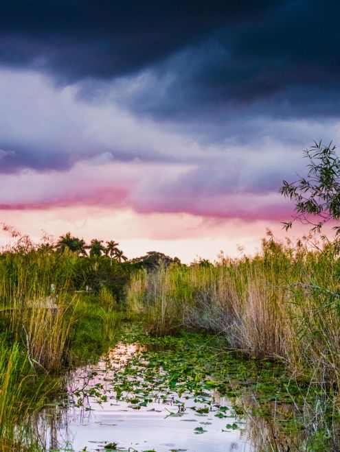 Storm clouds color the sky above Everglades National Park in Florida. Vast and unique, the park encourages exploration and discovery. In a place where a few inches of elevation can make a huge difference, visitors can kayak on quiet sloughs and marshes or hike through pinelands or scenic coastal lowlands. Photo by Kenneth Carper. Posted on Tumblr by the US Department of the Interior, 2/22/17.