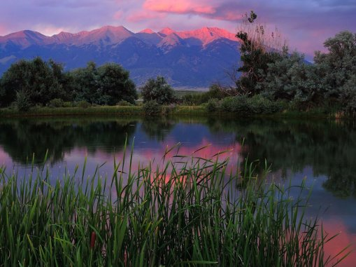 Unexpected beauty in Colorado's Great Sand Dunes National Park. Tweeted by the US Department of the Interior 7/20/17.