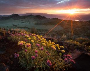 California's Slinkard Wilderness at sunrise. Tweeted by the US Department of the Interior, 7/14/15.
