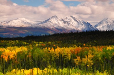 Check out the fall colors from Denali National Park with termination dust – the first snowfall that sticks to mountain tops and signals that winter is coming – visible on the Alaska Range in the background. The white of snow will rule the land until spring's distant arrival. Photo by Michel Hersen. Posted on Tumblr by the US Department of the Interior, 10/7/15.