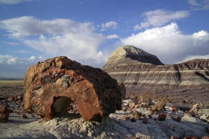Petrified Forest NP 36