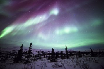 The aurora borealis over Denali National Park. Tweeted by the US Department of the Interior, 12/12/15.