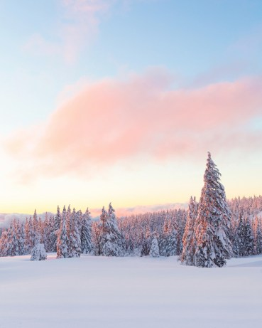 """The soft colors of sunset reflect off the snow, creating this breathtakingly beautiful shot from Crater Lake National Park in Oregon. Christian Schaffer snapped this pic a few months ago when the park's snowpack was over 8 feet high. Of the experience, she says, """"It was so incredibly beautiful and also incredibly cold – all of our electronics died while we were out there except my one camera battery. The cold was worth it though; one of the most amazing sunsets I've ever seen."""" Photo courtesy of Christian Schaffer. Posted on Tumblr by the US Department of the Interior, 3/6/16."""