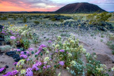 Amboy Crater is just one of the sights in the Mojave Trails National Monument, on historic Route 66. Photo by Bob Wick, BLM. Tweeted by the US Department of the Interior, 3/15/17.